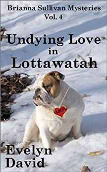 Undying Love in Lottawatah (Brianna Sullivan Mysteries Book 4) by [David, Evelyn]