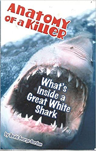 Anatomy Of A Killer Whats Inside A Great White Shark David George