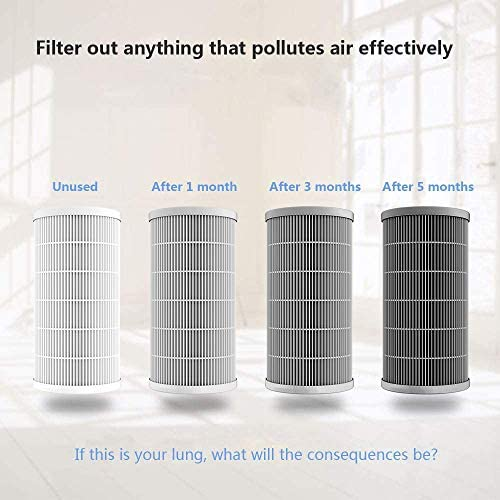 QUEENTY True HEPA Replacement Filter for Air Purifier FW04, Odour Allergies Eliminator for Smoke, Dust, Mold, Home, Office and Pets
