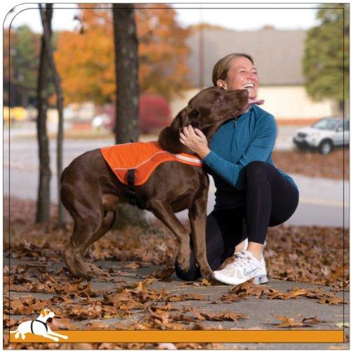 Kurgo Reflect & Protect Active Dog Vest, Orange, Large by Kurgo
