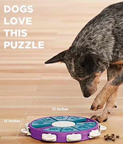 Outward Hound Nina Ottosson Dog Twister Dog Puzzle Toy Dog Game 4