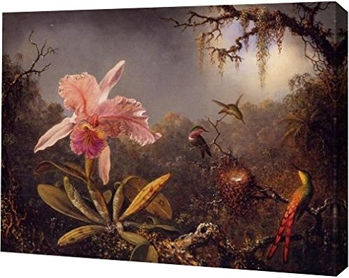 Cattleya Orchid and Three Brazilian Hummingbirds by Martin Johnson Heade - 12