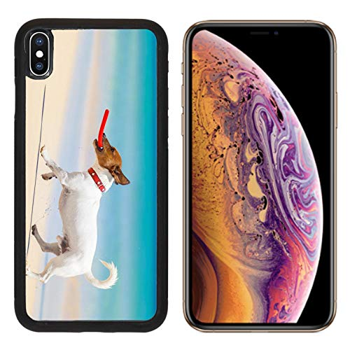 MSD Apple iPhone Xs Case Aluminum Backplate Bumper Snap Case Image ID 28835611 Dog catching a red Flying disc and Running at The Beach