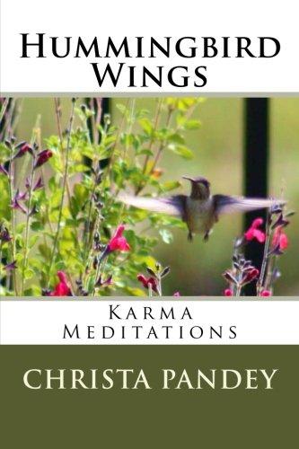 Hummingbird Wings: Karma Meditations - Hummingbird Wings