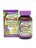 Bluebonnet Super Earth Rainforest Animalz Multiple Chewable, Orange, 90 Count For Sale