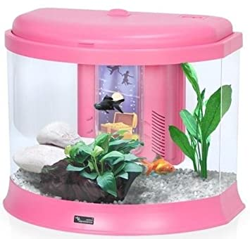 Aquatlantis Aquatresor - pecera Infantil: Amazon.es: Productos para mascotas