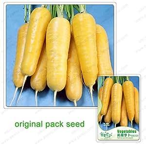 60 semillas / paquete, Daucus carota subsp, zanahorias amarillas semillas, semillas de hortalizas en macetas Balcón, vegetales orgánicos bonsai