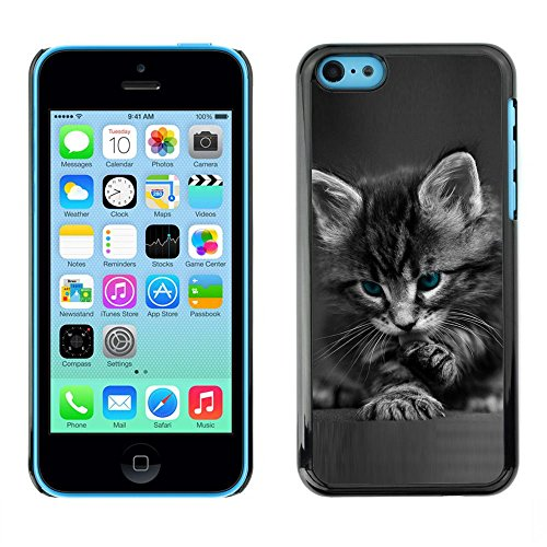 TopCaseStore / caoutchouc Hard Case Housse de protection la Peau - Cute Paw Kitten Whiskers Grey Baby Cat - Apple iPhone 5C