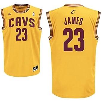 4eb7084fedcb Cleveland Cavaliers LeBron James  23 NBA Jersey (XXL (54 Chest ...