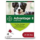 Bayer Advantage II Flea and Lice Treatment for Large Dogs, 21 - 55 lb, 4 doses (Packaging may vary)