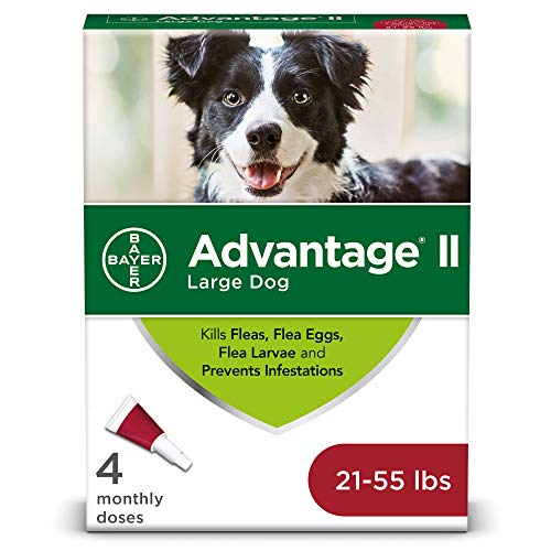 - Flea and Lice Treatment for Dogs, 21 - 55 lb, 4 doses, Advantage II