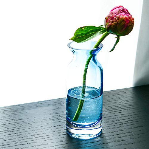 Slegan Glass Vase 6 inch Hand Blown Colorful Glass Bud Vase in Unique Shape for Home Decor (Blue)