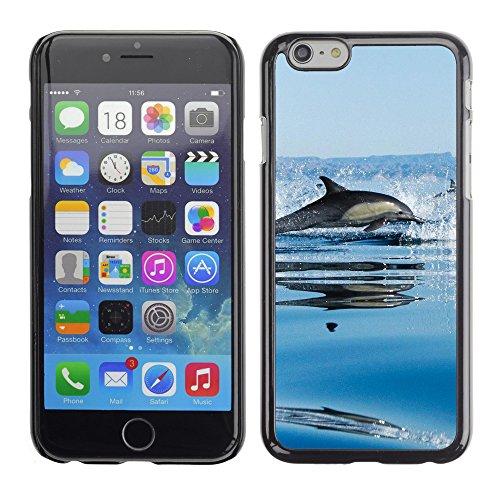 "Premio Sottile Slim Cassa Custodia Case Cover Shell // V00003252 dauphins dans la mer // Apple iPhone 6 6S 6G PLUS 5.5"""