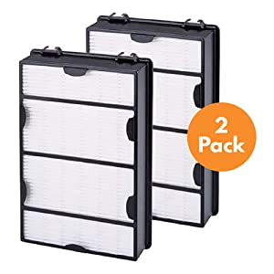 True HEPA Replacement Filter Compatible with Holmes HAPF600 (B Filter) Console Allergen Remover Filter, 2 Pack