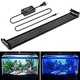 Lightess 72 LED Aquarium Light 14W Super Brightness Fish Tank Light with Extendable