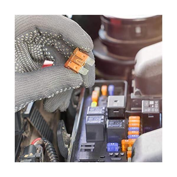 51joW17bo2L 300 Stück Sicherungen Kfz, Autosicherungen Set (2A/3A/5A/7.5A/10A/15A/20A/25A/30A/35A/40A) für Austausch von Standard…