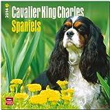 Cavalier King Charles Spaniels Calendar, , 1465009760