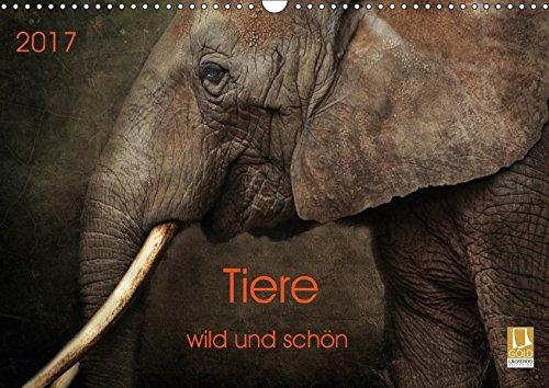 Tiere - wild und schön (Wandkalender 2017 DIN A3 quer): Kunstvoll gestaltete Tierportraits (Monatskalender, 14 Seiten ) (CALVENDO Tiere)