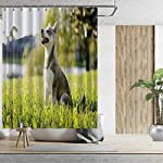 Alaskan Malamute Bath Curtains Shower,Klee Kai Puppy Sitting on Grass Looking Up Friendly Young Cute Animal DShower Curtainsrative for Home,59''W x 71''H 9