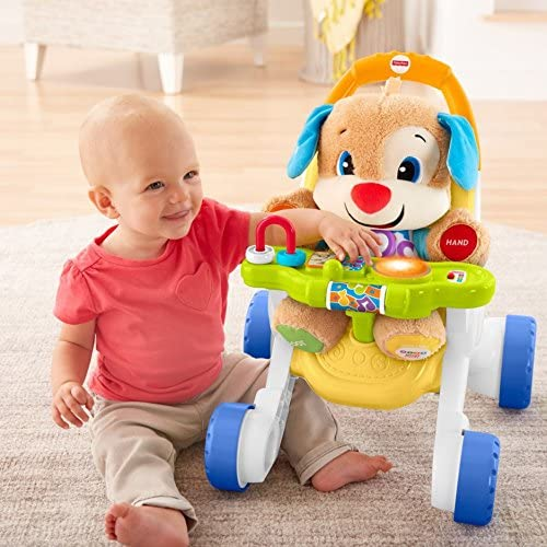 Amazon.com: Fisher-Price - Andador de paseo y aprendizaje ...