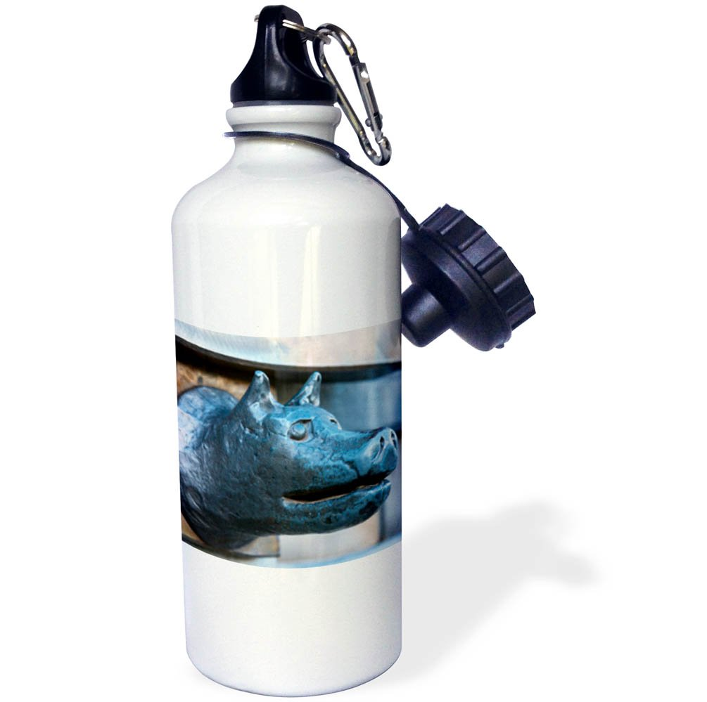 3dRose Danita Delimont - Objects - She wolf handle at the Arch of Constantine, Rome, Latium, Italy - 21 oz Sports Water Bottle (wb_277632_1) by 3dRose