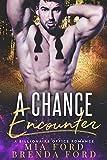 A Chance Encounter: A Billionaire Office Romance