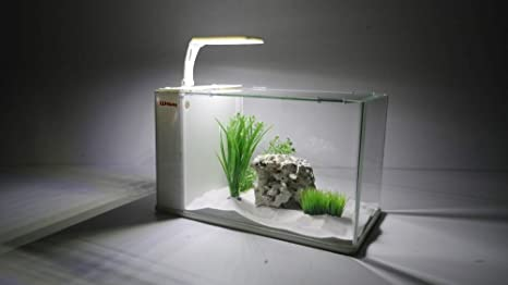 Aqua Orion 40 en color blanco con resistencia calefactora Nano Acuario Completo Acuario Mini + LED