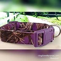 Purple Camo Dog Collar with Leash Option