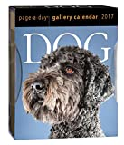 Dog Page-A-Day Gallery - 2017 Boxed Calendar 6 x 7in