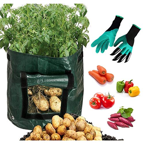 Mumu Sugar Potato Grow Bags with Garden Gloves,2 Pack 10 Gallon Vegetables Planter Bags with Access Flap, Raised Garden Bed Heavy Duty Suitable for Planting Vegetables, Taro, Radish, Carrots, Onions