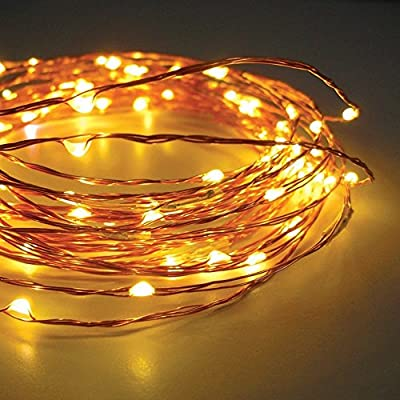 33ft 100 LEDs Fairy LED Wire String Lights - Starry Starry Lights w/ Power Adapter for Festival, Holiday, Christmas and Party - Warm White - Waterproof THL-04