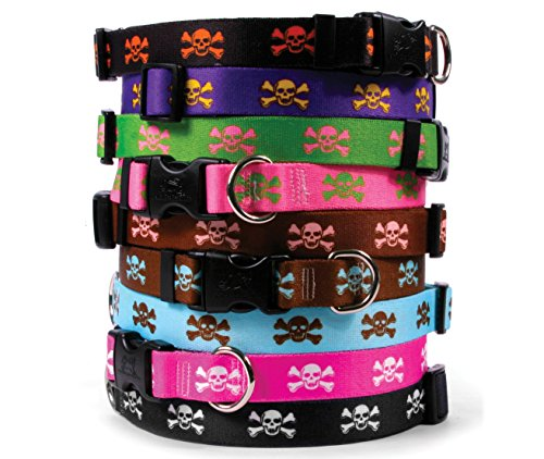 Skull & Crossbones Dog Collar - Black with White - Large 18 to 28 inch length x 1 inch wide - with Tag-A-Long ID Tag System