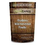 Blueberry, Wild Harvested Powder 2.2 LBS (1000 G)