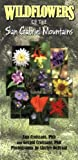 Wildflowers of the San Gabriel Mountains, Ann Croissant and Gerald Croissant, 1932173765