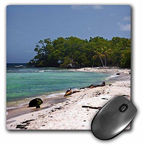 (3dRose LLC 8 x 8 x 0.25 Walking on The Beach West Snake Cay Belize Joe Restuccia III Mouse Pad (mp_85571_1))