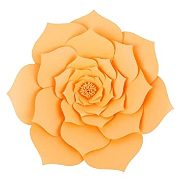 Diy Paper Flower Backdrop Wall Large Paper Flowers Amazon Com
