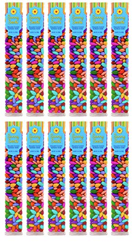 Chocolate Covered Sunflower Seeds Multicolored Candy Coated Treats - Rainbow Party Favors - Sweet and Crunchy Topping - Pack of 12