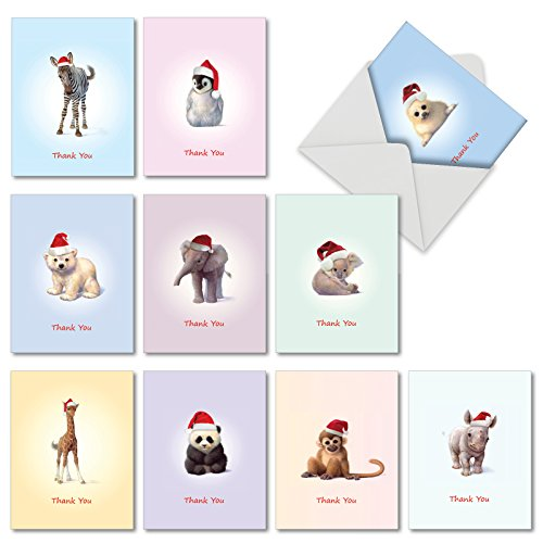 Noble Works Cards Christmas Zoo Babies' Holiday Thank You Notes, Boxed Set of 10 Adorable Christmas Baby Animals Gratitude Notes 4 x 5.12 inch, Sweet Smiling Infant Critters in Santa Hats, M6726XTB.