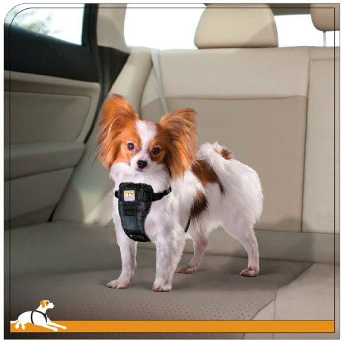 Kurgo Tru-Fit(TM) Crash Tested Dog Harness, Black, Small