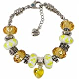 Birthstone Heart Charm Bracelet with European Bead Charms for Women and Girls, Stainless Steel Rope Chain
