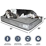 """[NEW] PetFusion SerenityLounge Dog Bed (Large, 36x28x 4""""). Premium Suede Cover w/ Solid 4"""" Memory Foam. Replacement Covers also available"""
