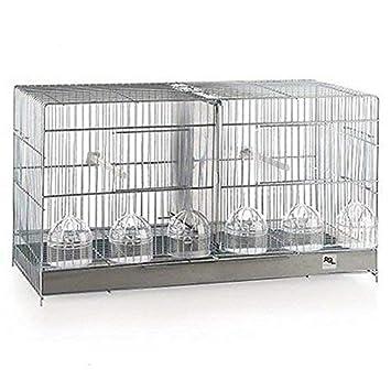JAULA DE CRIA RSL 60 CM: Amazon.es: Productos para mascotas