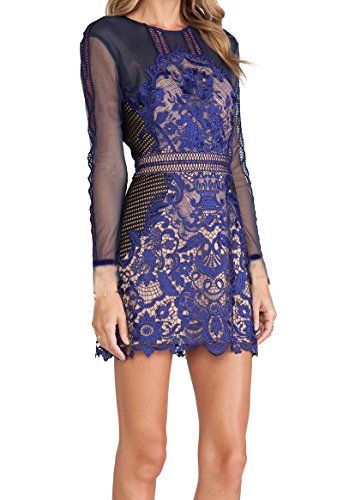 celebritystyle-blue-lace-and-mesh-dress-s