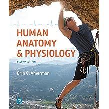 Human Anatomy & Physiology (2nd Edition)