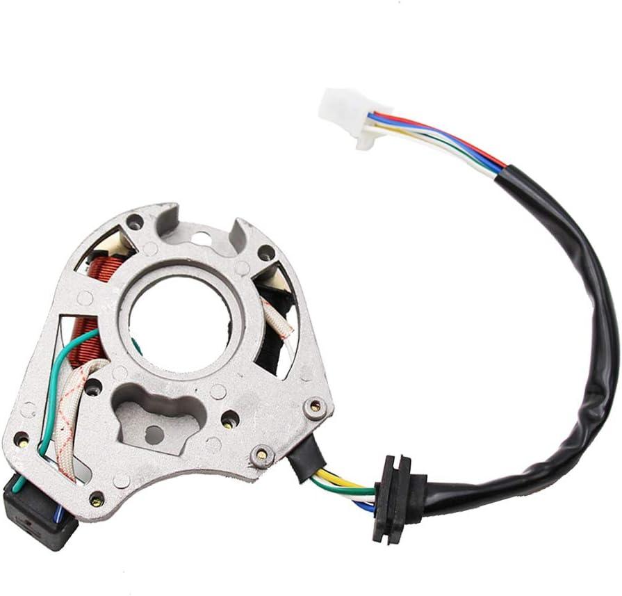 Amazon.com: ATV Qaud 2 bobinas Estator Encendido Magneto ...