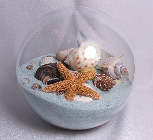 Sand & Shell Sandglobe Paperweight 5-inch Seabreeze Sand ()