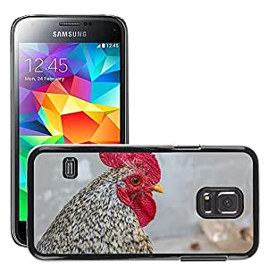 Super Stella Slim PC Hard Case Cover Skin Armor Shell Protection // M00145023 Bird Cock Pets Poultry Winged // Samsung Galaxy S5 MINI SM-G800
