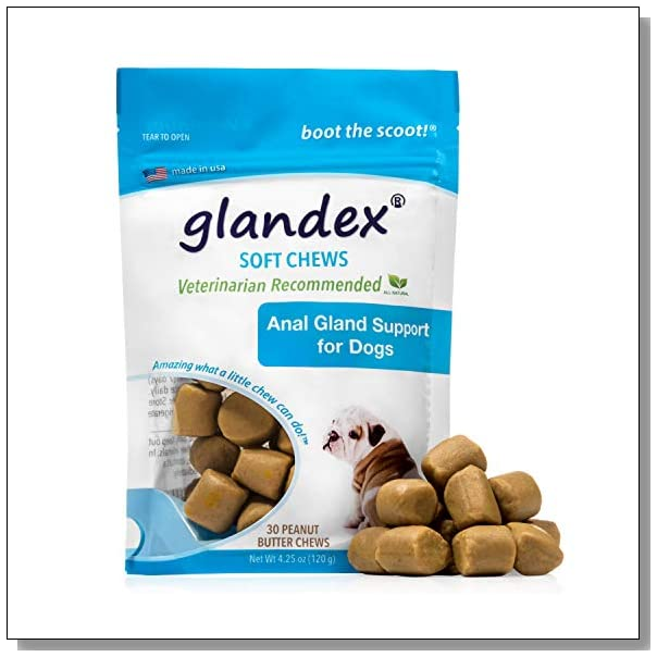 Glandex Anal Gland Soft Chew Treats with Pumpkin for Dogs 30ct Peanut Butter Chews with Digestive Enzymes, Probiotics Fiber Supplement for Dogs – Vet Recommended - Boot The Scoot (Peanut Butter)