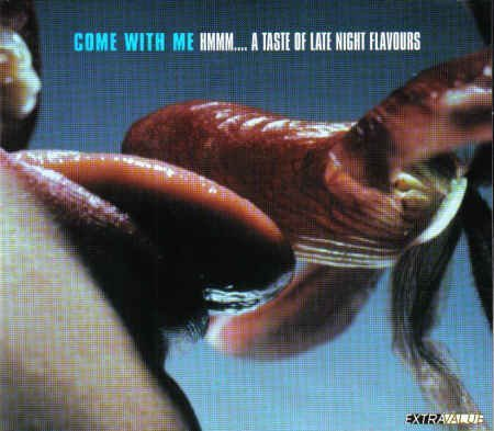 Come With Me - Hmmm...A Taste Of Late Night Flavours (2002) [Digi-pak] By Various Artists (0001-01-01)