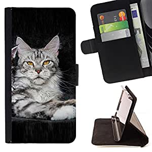 - koshka kotenok fon - - Monedero PU titular de la tarjeta de cr????dito de cuero cubierta de la caja de la bolsa FOR Apple Iphone 6 PLUS 5.5 RetroCandy
